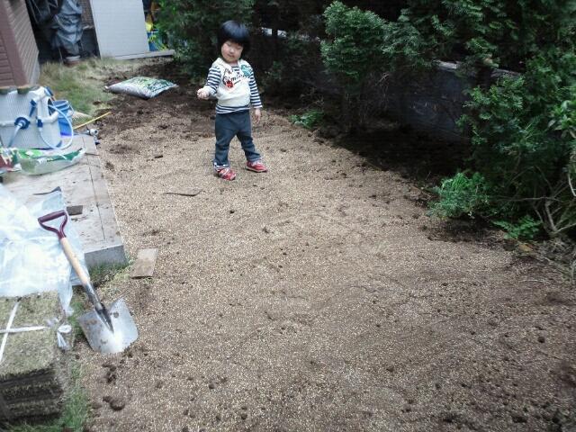 芝生を張り直した